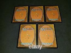 MTG 5x 2002 Arena Promo basic land LP FOIL Forest (AlphaBeta Art)