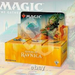 Magic The Gathering Guilds Of Ravnica Booster Box Mtg